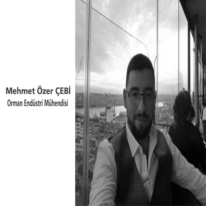 Mehmet Özer Çebi